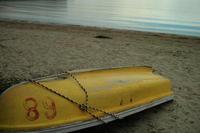 海辺の夏 - ぴんの助でございます