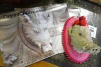 はや、干支教室とカレンダー2019のお知らせ^^ - 動物・テディべア 時々 パリの街角動物