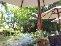 8月の薔薇の作業 - 薔薇のガーデナー Weekend's+Ladybirds