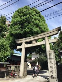 神社巡り『御朱印』元麻布氷川神社 - (鳥撮)ハタ坊:PENTAX k-3、k-5で撮った写真を載せていきますので、ヨロシクですm(_ _)m