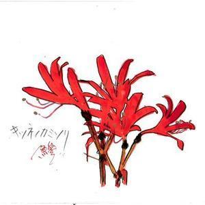 地蔵盆は何処へゆく/京都の盆の過ごし方 - 鯵庵の京都事情