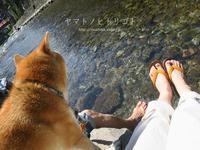 川遊び - yamatoのひとりごと