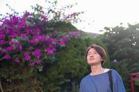 きみと葉山旅再び【26】 - 写真の記憶