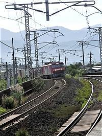 藤田八束の鉄道写真@青い森鉄道を走る貨物列車「金太郎」と「レッドサンダー」・・・猛暑の中を沢山の荷物を運んでいます、この姿が観光になる日は近い - 藤田八束の日記