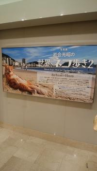 初サイン会 - 京都で不動産・中古マンションを探すなら「京都マンション・戸建ナビ」