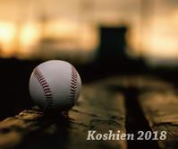 高校野球って素晴らしい!!金足農VS日大三…明石の釣り@ブログ - 明石の釣り@ブログ