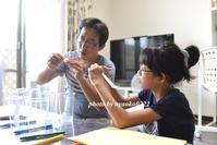 夏の自由研究~中1~ - nyaokoさんちの家族時間