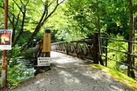 渓谷と滝が織りなす 乙女渓谷  子滝登頂 編 - 風の便り