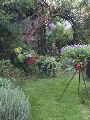 久しぶりの庭仕事 - ベルバーンに魅せられて