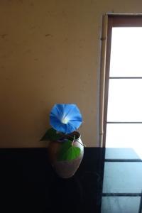 名残の朝顔 - g's style day by day ー京都嵐山から、季節を楽しむ日々をお届けしますー