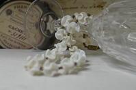 フランスルイ・ロスレーのネックレス - アンティークドボタンキコ(アンティーク、ヴィンテージ使用アクセサリーetc)