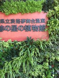 3日間のお休みどうもありがとうございました - 花と暮らす店 木花 Mocca