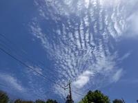 今日の雲 - 私の息抜き(^o^)
