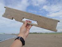 お盆明けの三里浜・3 - Beachcomber's Logbook