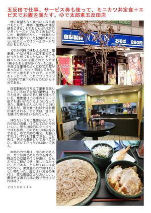 五反田で仕事、サービス券も使って、ミニカツ丼定食+エビ天でお腹を満たす。