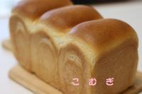 9月の日程とメニューのお知らせ - パン・お菓子教室 「こ む ぎ」