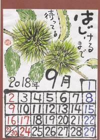 2018年9月毬栗 - ムッチャンの絵手紙日記