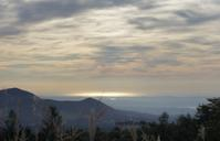 マツムシソウを見に - 標高480mの窓からⅡ