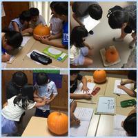 夏休み中学年クラスは かぼちゃでhow? - つばき英語教室