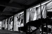 盆仕度月 寫誌 ⑯ 漁港 - le fotografie di digit@l
