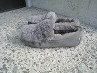 EMU Australia・・・ - BON-GOUT  blog