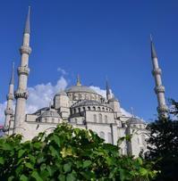 視点を変えて…スルタンアフメットジャーミー - 写真でイスラーム