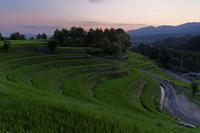 光指す棚田 - katsuのヘタッピ風景