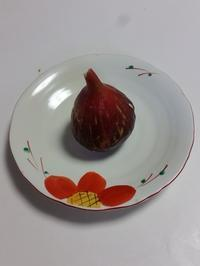 無花果(松浦) - 柚の森の仲間たち