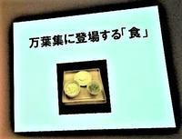 高岡万葉歴史館学習講座「日めくり万葉集」を読む - シェーンの散歩道
