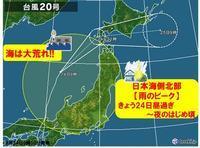【台風20号シマロンの爪痕】 - お散歩アルバム・・春日和バラ日和