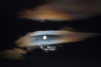 An Eye in The Night Sky - ライカとボクと、時々、ニコン。