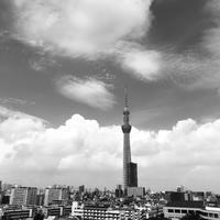スカイツリーと雲^_^v - ~おざなりholiday's^^v~ <フィルムカメラの写真のブログ>