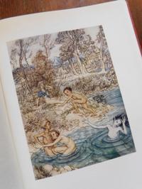 Arthur Rackham:Fairy Tales by Hans Andersen② - Books