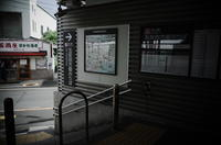 Tokyo Snap 24池上線千鳥町 - 花は桜木、
