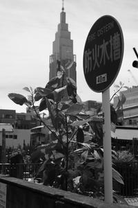 東京スナップ #339 - 心のカメラ   more tomorrow than today ...