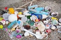 Plastics - HTY photography club