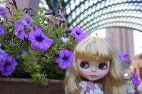 暑いわ強風だわの中、恵比寿でミンティーさん外撮り - T's Photo Diary3(Grass Field*)
