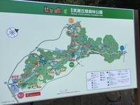 朝練!国営武蔵丘陵森林公園 - White Summer