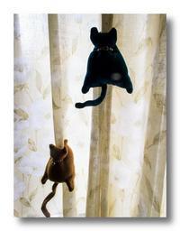 猫クリップ - 気まぐれフォト