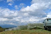 「お問い合わせより」ご注文が出来ます。 - ~葡萄と田舎時間~ 西田葡萄園のブログ