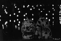 なら燈花会 2018 -3- - ◆Akira's Candid Photography