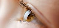 ( ゚д゚)「HEV420対策レンズ」■イズミヤ白梅町店■ - メガネのノハラ  イズミヤ白梅町店                                  staffblog@nohara