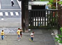 縄跳び・わらべうた(1950年ころの思い出〉東京 - あの町 この道