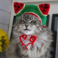 ルナもスイカになったにゃ! - 愛しき猫にゃん♪