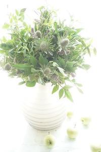 グリーンだけのサマーブーケ、ドライにもなります - お花に囲まれて