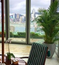香港 ペニンシュラ5 屋内プール - 関空から旅と食と酒紀行