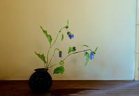 黒ほうずき - g's style day by day ー京都嵐山から、季節を楽しむ日々をお届けしますー