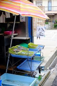 鞆の浦散歩 #3 - yuru run*run Cafe