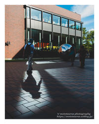 Catch the shadow - ♉ mototaurus photography