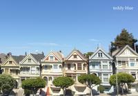Back from San Francisco  サンフランシスコより - teddy blue